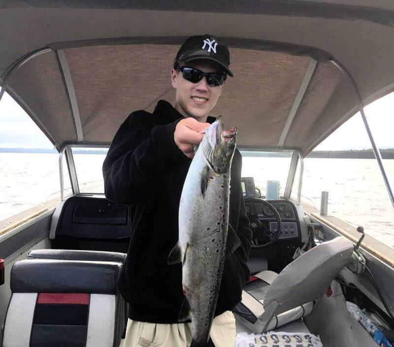 Moosehead Lake Salmon